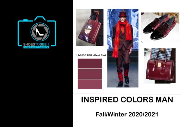 Fall Winter 2020 2021 Trends.Inspired Colors Shoestosee